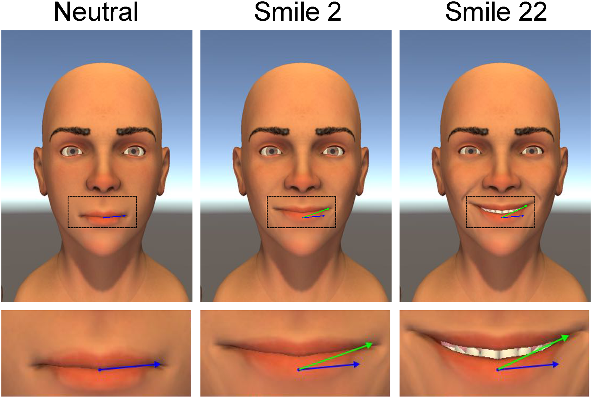 Dynamic Properties of Successful Smiles (image missing)